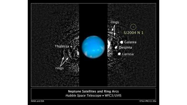 орбита 14 Hippocamp